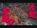 【Bloodborne】|高難易度ブラッドボーン|大蛇天国|【初見実況】part36