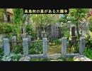 第182回『コロナ騒ぎの一部始終』【水間条項TV】会員動画