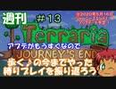 週刊 [Terraria] ♯13 今までやって来たプレイの振り返り [ゆっくり実況]