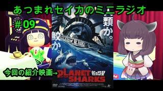 【鮫の惑星】あつまれセイカのミニラジオ