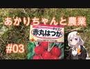 あかりちゃんと農業#03『はつか大根の種をまきます』