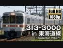 【JR東海】313系3000番台 in 東海道線 ~Collection Vol.07~