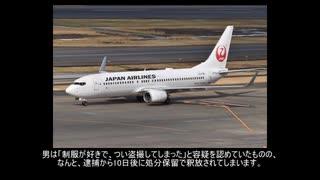 【ゆっくり事故調査委員会特別編】航空事