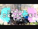 【VOICEROID園芸部】ことのふぁーむ!その2!【琴葉茜・葵】