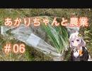 あかりちゃんと農業#06『ネギを植えます』