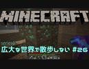 【実況プレイ】広大な世界で散歩しない【Minecraft】【第六回】#26