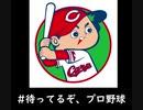 Dream Park ~野球場へゆこう~ 広島東洋カープ編