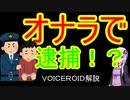 【VOICEROID解説】世界中の変な法律