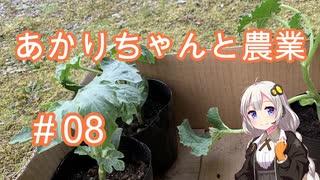 あかりちゃんと農業#08『スイカとかぼちゃ