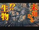 【Bloodborne】|高難易度ブラッドボーン|未知なる生物|【初見実況】part42
