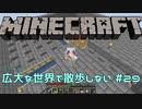 【実況プレイ】広大な世界で散歩しない【Minecraft】【第六回】#29