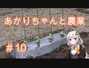 あかりちゃんと農業#10『ピーマンとししとう』