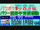 【パワポケ9】少森寺パワー型野手育成理論【解説実況】