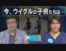 【ウイグルの声#37】米上院「ウイグル人権法案」可決 / 中国動画投稿サイトで見える、ウイグルの子供たちの今[R2/5/20]