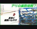 蟻の巣防衛戦!異常に細長いムカデがアリの巣に侵入してきたら・・・。