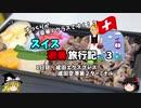 【ゆっくり】スイス旅行記 3 成田エクスプレスで駅弁を食す!
