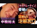 【ジェネハウス】GENERATIONS中務裕太が愛してやまないハリネズミアルビーとのナイトルーティン!! - LDH JAPAN
