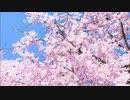 【ニコラップ】Daydream feat. W!RELESS【Metal's Rhyme】