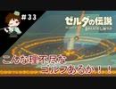 【実況】マスターモードでやりこみサバイバル生活!! Part33 【ゼルダの伝説 BotW】