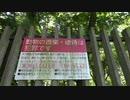 【猫探し】長居公園、猫はいるのか(大阪)<後編>