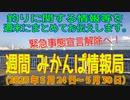 週間 みかんぱ情報局(2020年5月24日~5月30日)