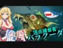 【Maneater実況03】安高価ゲーム好きの琴葉姉妹とサメと初めての頂点捕食者