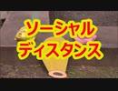 【踊ってみた】ソーシャルディスタンス【10円】