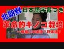 【☎北朝鮮農業】国家的な関心の中で行われているきのこ栽培(朝鮮総連エルファTV2014年2月公開)