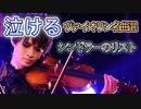 【泣けるバイオリン名曲選】シンドラーのリスト