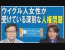 【ウイグルの声#38】中国「脱貧困政策」の下で行われている、ウイグル人女性への人権侵害[R2/6/12]