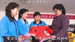 【☎北朝鮮音楽:空耳コメントあり】お会いしたかったです(お目にかかりたかったです、2020年6月放送)【へっぽーしっぽすみだー】