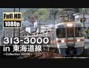 【JR東海】313系3000番台 in 東海道線 ~Collection Vol.08~