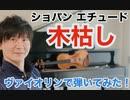ショパン エチュードOp.25-11「木枯し」をヴァイオリンで弾いてみた
