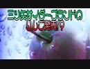 三ツ矢サイダーブランドのりんご発売!?