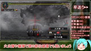 【MHP2G】今更公式チート武器で難関クエを