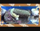 【剣盾】水族館パでワイワイバトル:13【ダブルランク・シーズン7】