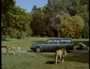 CM サファリパークからライオンが…