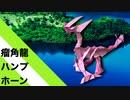 """【折り紙】「瘤角龍ハンプホーン」 19枚【ドラゴン】/【origami】""""Ryukaku Dragon Hump Horn"""" 19 pieces【dragon】"""