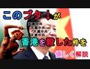 【解説】国家安全法がブタ[習近平]の独断で香港に適用されることになり、香港の民主活動家が全て逮捕されて中国に連れていかれる件について優しく解説(俺の優しいニュース解説)[俺のシリーズ]