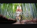 【ご当地合作2単品】KyotoDhole