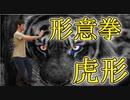 虎形(形意拳・十二形拳)を稽古 中国武術の達人 孫禄堂の流派