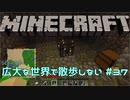 【実況プレイ】広大な世界で散歩しない【Minecraft】【第六回】#37