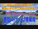 週間 みかんぱ情報局(2020年6月28日~7月4日)