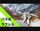 """【折り紙】「パラボラプトル」 17枚【恐竜】/【origami】 """"Parabola Ptor"""" 17 sheets【dinosaur】"""