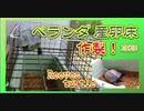 【クサガメ】産卵床を作る!2020 ベランダ飼育[create a spawning bed in balcony.Turtle spawning] Reeves turtle