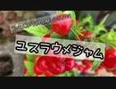 FROM ONE〜ユスラウメジャム〜