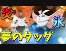 【実況】ポケモン剣盾 でたわむれる  夢のタッグ