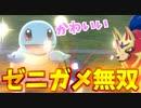 【実況】ポケモン剣盾 でたわむれる ゼニガメが謎の無双をする動画