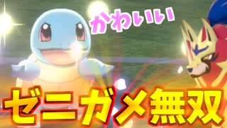 【実況】ポケモン剣盾 でたわむれる ゼニ