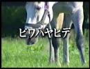 競馬 名馬物語2 ビワハヤヒデ(1/3)
